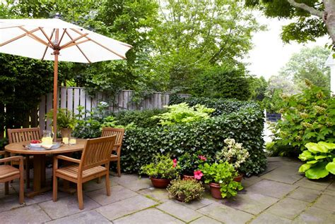 landscaping ideas for small gardens 5 ideas para plantear y decorar jardines peque 241 os