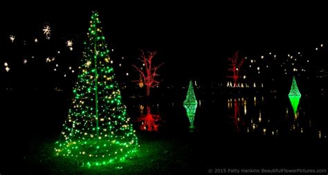 most beautiful outdoor christmas lights outdoor christmas lights at longwood gardens 2015