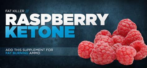 weight loss ketones raspberry ketones weight loss support