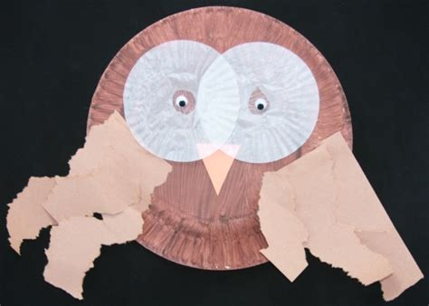 Paper Plate Snowy Owl Craft - paper plate owl preschool project animals and