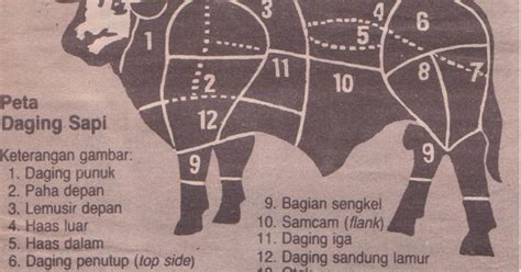 indonesian kitchen peta daging sapi