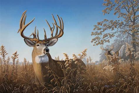 Big City Bucks | Larry Zach Wildlife Art Whitetail Buck Drawings