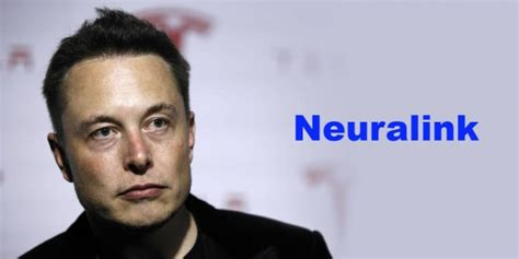 elon musk neural link seu c 233 rebro e seu computador est 227 o prestes a engatar um