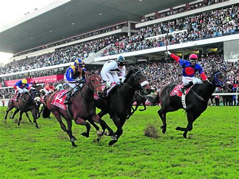 after party vodacom durban july durban july accommodation hotel packages with tickets