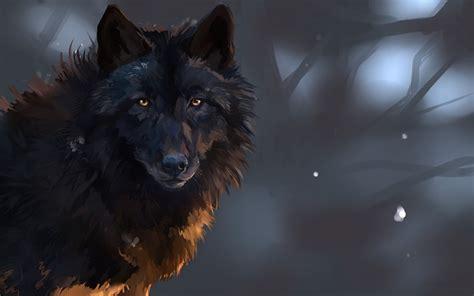 lobo full hd fondo de pantalla and fondo de escritorio lobo fondos de pantalla gratis