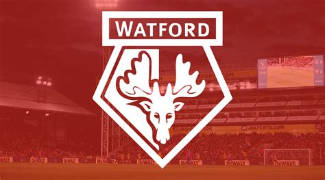 palace v watford tickets on general sale news