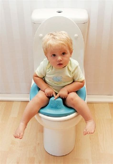 how to your to potty in the toilet bumbo toilet trainer bubs n grubs