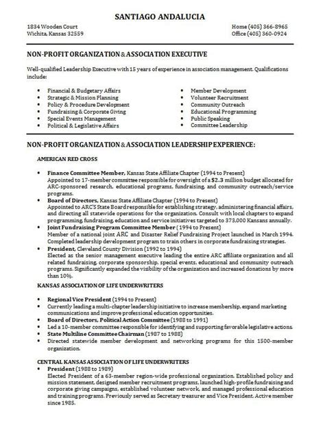 resume 10 sles of professional resume formats you can use in resume sa