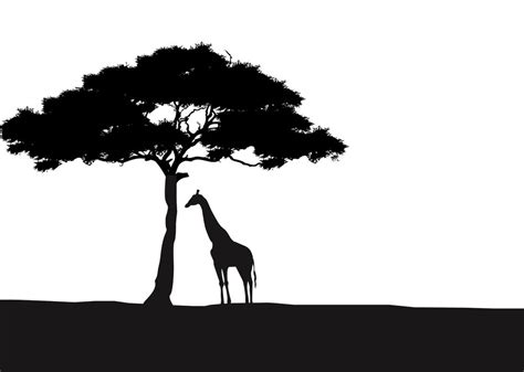 Hakuna Matata Wall Stickers african giraffe and acacia tree silhouette wall art