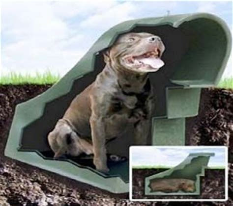 stay out of the dog house underground dog houses advantages and disadvantages