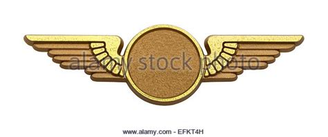 Airline Pilot Background Check Airline Pilot Stock Photos Airline Pilot Stock Images Alamy