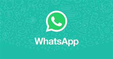 tutorial whatsapp api social media apis that you can use in your projects