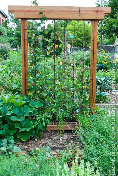 Vegetable Garden Trellis 136 Best Images About Garden Trellis And Staking On