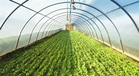 sustainable house 3d sustainable house sustainable house greenhouse farming guide in india agrifarming in