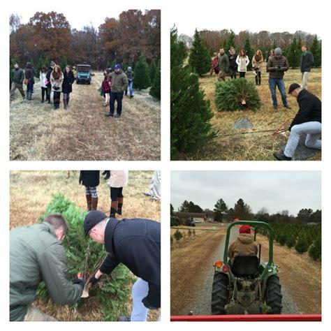 arkansas christmas tree farm lizardmedia co