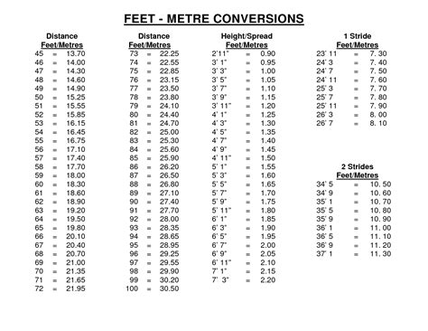 printable height conversion chart feet to meters height printable height conversion chart feet to meters height
