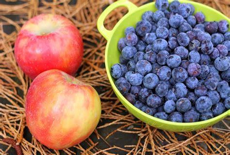alimenti per insufficienza renale reni alimenti per migliorare le funzioni renali