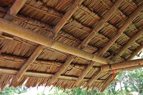 Mata Sok Rofing Camel Panjang atap rumbia bahasa melayu ensiklopedia bebas