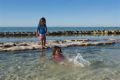 glass bottom boat tours gladstone the ultimate family friendly great barrier reef guide