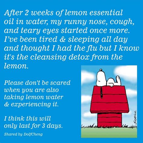 Detox Healing Crisis Symptoms by 67 Best Images About Lemon Living On