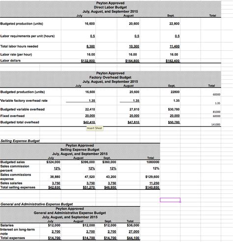 sle budget report budget variance report sle 28 images income statement