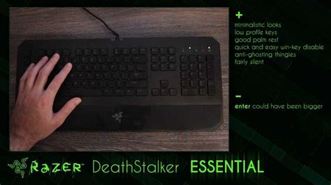 Razer Deathstalker Essential Deathadder 2013 razer deathstalker essential keyboard review