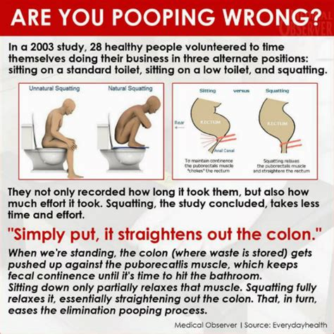 Stool Movement by What Is The Proper Way To Read This Before Your