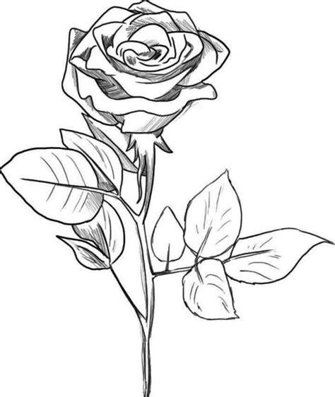 lukisan bunga mawar hitam putih rudi gambar