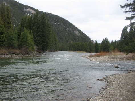 fishing the gallatin river montana may 11 gallatin river montana