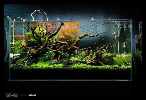 aquascape aquarium supplies 28 images how to make