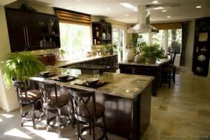 Kitchen Ideas With Dark Cabinets by Pictures Of Kitchens Traditional Dark Espresso Kitchen
