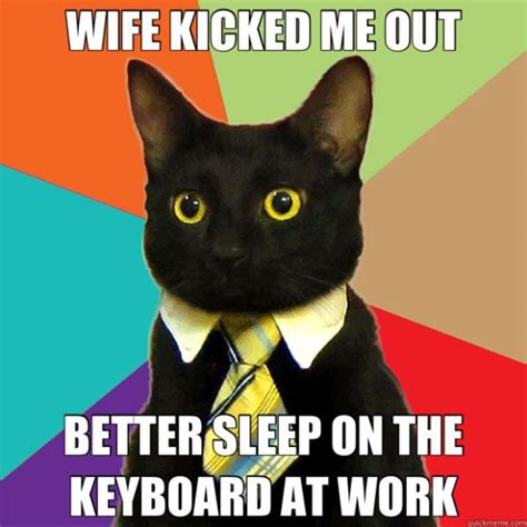 a small selection of the business cat memes 39 pics