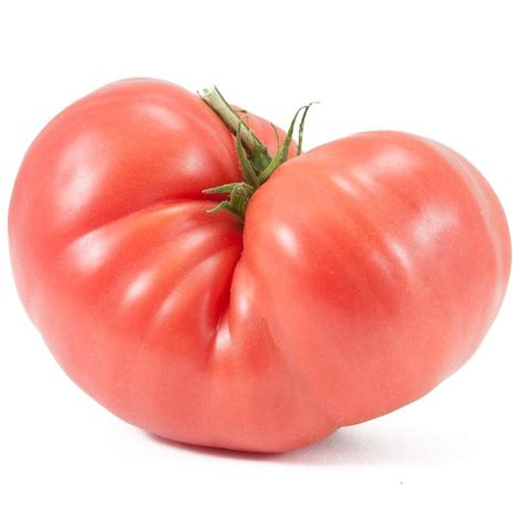 Tomato Purple Seeds peaceful valley organic tomato seeds prudens purple groworganic