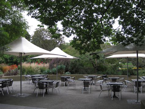 Cafe At Botanic Gardens Botanical Gardens Restaurant Melbourne Shannon S Jardin Cafe In Royal Botanic Gardens 10