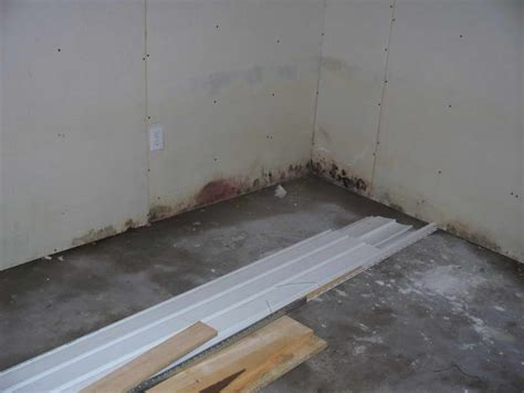 improvement how to how to remove mold in basement