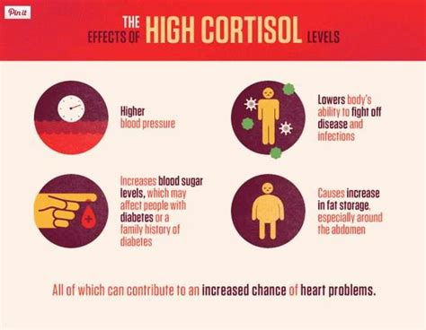 high cortisol levels top 3 energy supplements for women