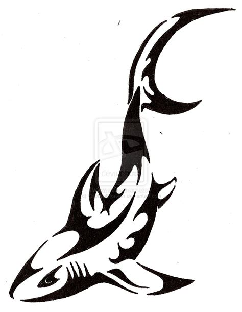 shark tribal tattoo 1000 images about tats on
