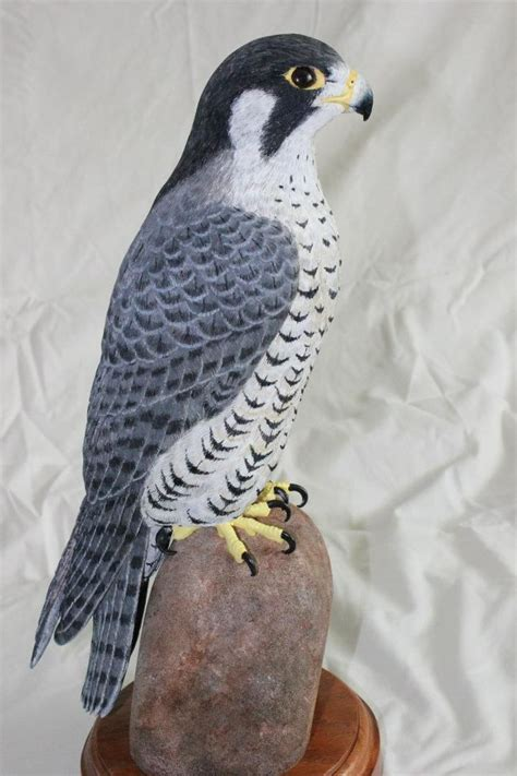 peregrine falcon tattoo peregrine falcon falcon and peregrine on