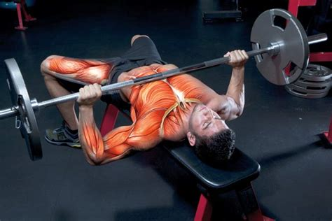 big show bench press bench press personal record get a bigger bench press
