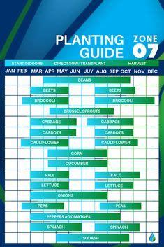 zone  vegetable planting calendar guide vegetable