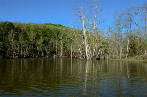 table rock lake at piney creek wilderness ozarks walkabout
