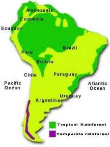 rainforest map south america rainforest map