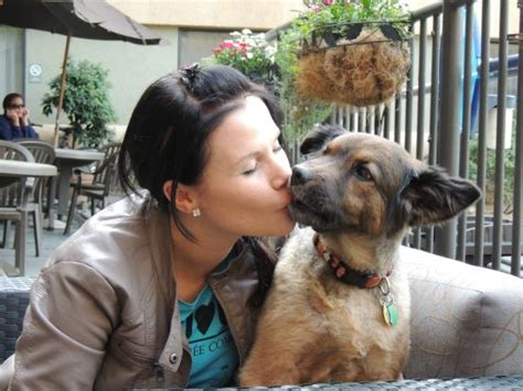 pictures  gloriously kisses  dog  owner caught  camera mojly