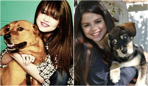 selena gomez puppy selena gomez is a lover she has 6 of them