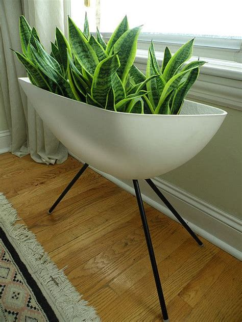 mid century modern plants stands images