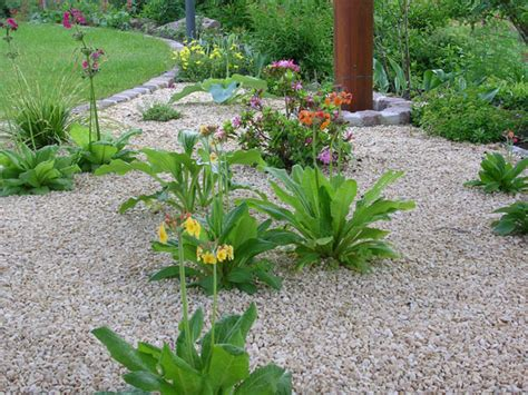 Schöne Gärten Bilder by Pflanzen F 252 R Steing 228 Rten Klein Aber Fein Die 7 Besten