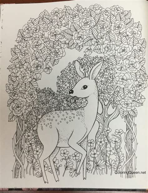 secret garden colouring book canada artist johanna basford enchanted forest coloring pages