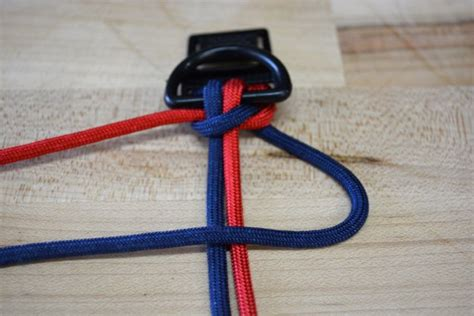 how to make a paracord collar how to make a paracord collar diy projects craft ideas how to s for home decor