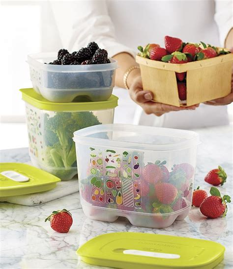 Seal Summer Tupperware 231 best images about tupperware on goods