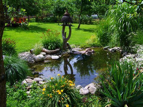 backyard botanical garden free images grass lawn flower stream backyard